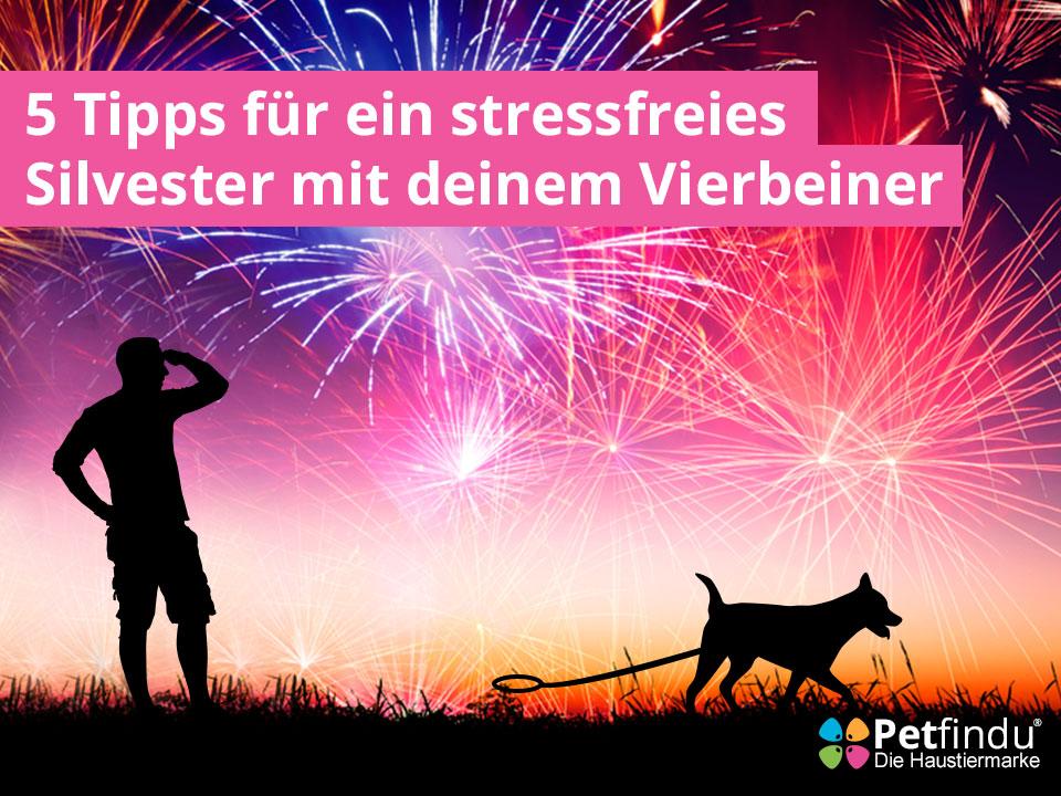 5_Tipps_ Silvester_mit_Hund