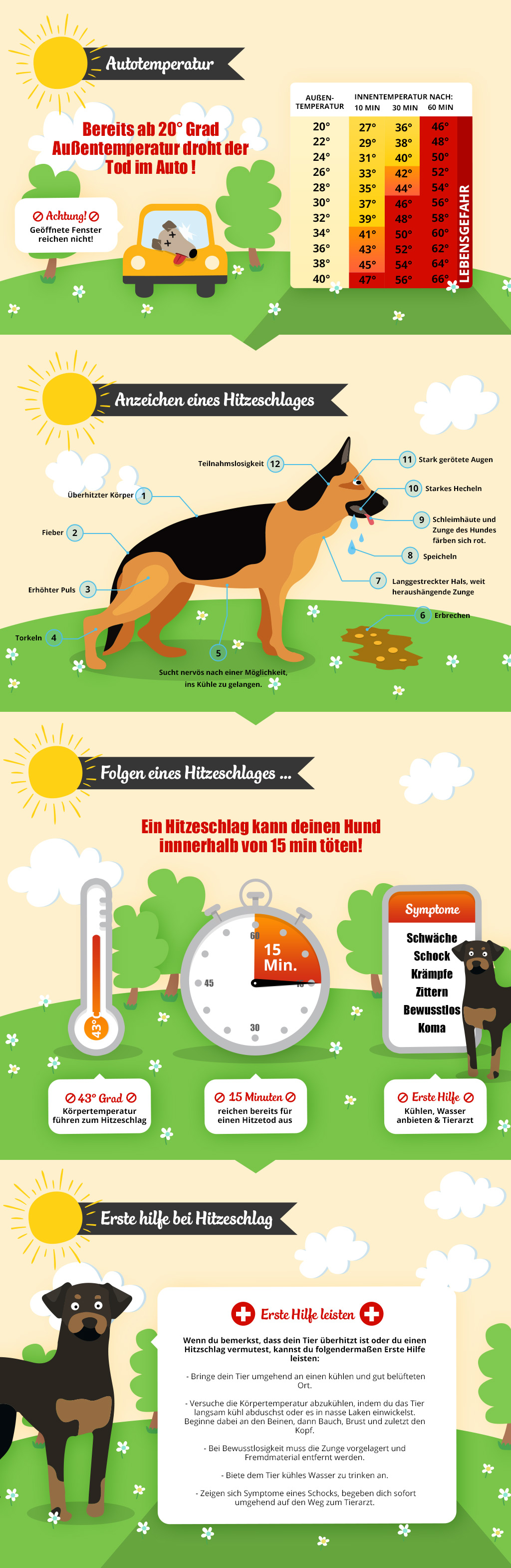 Auto_Hund_Hitze_Gefahr_Tot_Infographic_