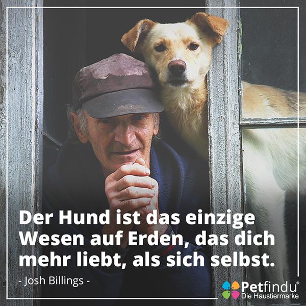 Hund_alter_mann_alt